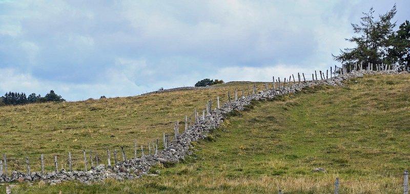 terrain avec un mur et une clôture